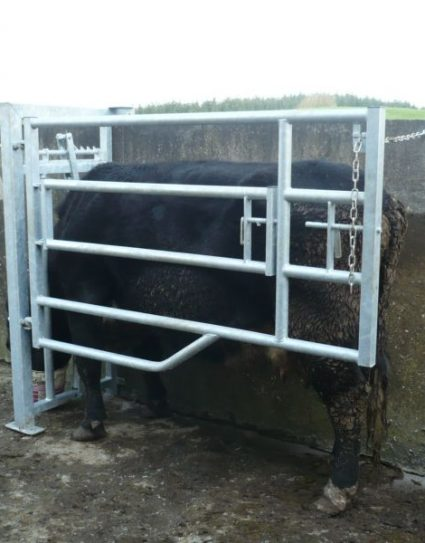 (B) Divided Calving Gate