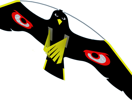 Terror Hawk Kite